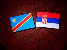 与塞尔维亚旗子的刚果民主共和国旗子在tre 免版税图库摄影