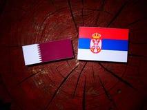 与塞尔维亚旗子的Qatari旗子在被隔绝的树桩 库存图片