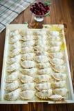 与填装的未加工的饺子 免版税图库摄影