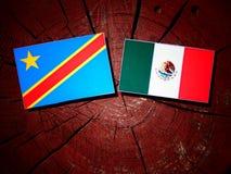 与墨西哥国旗的刚果民主共和国旗子在tre 免版税图库摄影