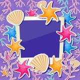 与壳、星鱼和珊瑚装饰品装饰的照片框架 库存图片