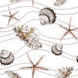 与壳、海星和米黄波浪线的无缝的海洋样式 库存图片
