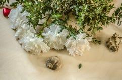 与壳和黄杨木潜叶虫常青树分支的白色康乃馨在胶合板的 免版税库存图片