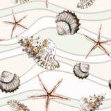 与壳的无缝的海洋在背景的样式和海星 库存图片