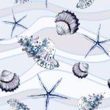 与壳的无缝的海洋在背景的样式和海星 免版税库存图片