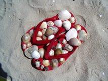 与壳的红色塑胶人字平底拖鞋 免版税库存图片