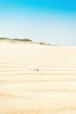 与壳的起波纹的金黄沙子,垂直 免版税库存照片