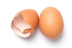 与壳的鸡蛋 免版税库存照片