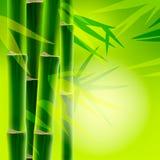 与复制空间的竹背景 免版税库存照片