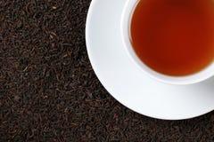 与复制空间的红茶 免版税图库摄影
