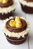 复活节小鸡杯形蛋糕 免版税库存照片
