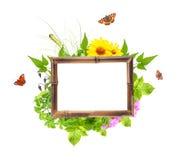 与夏天花、绿色叶子和昆虫的竹框架 库存照片