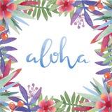 与夏威夷问候的水彩植物的热带框架 图库摄影