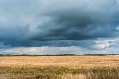 与多云天气,在一个斜切的黄色领域的大多雨云彩的秋天风景 免版税库存照片