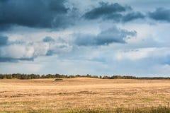 与多云天气,在一个斜切的黄色领域的大多雨云彩的秋天风景 免版税库存图片