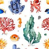 与多彩多姿的珊瑚、贝壳、海草和鱼,海象的水彩无缝的样式 皇族释放例证