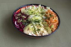 与多彩多姿的菜的沙拉 库存图片