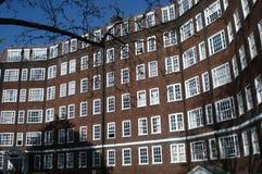 与多扇上下开关窗的伦敦都市建筑学红砖经典residental大厦门面 免版税库存图片