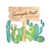 与多汁植物的水彩木切片横幅 免版税库存图片