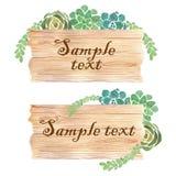 与多汁植物的水彩木切片横幅 免版税图库摄影
