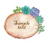 与多汁植物的水彩木切片横幅 库存图片