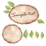 与多汁植物的水彩木切片横幅 库存例证