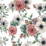与多汁植物,毛茛属,银莲花属的水彩无缝的样式 手画花、eucaliptus叶子和多汁植物 图库摄影