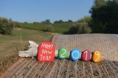 与多色的石头的新年快乐2019年在干草卷有国家背景 向量例证