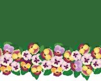 与多色花的无缝的模式边界 免版税库存图片