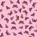与多色蝴蝶的无缝的纹理 库存照片