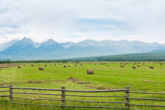 与多雪的山峰的高山, 免版税库存图片