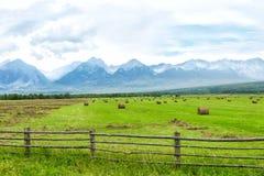 与多雪的山峰的高山, 免版税图库摄影