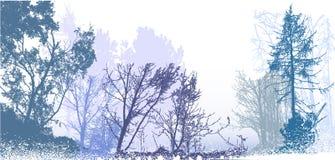 与多雪的树、植物和灌木剪影的全景冬天森林风景  图库摄影
