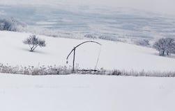 与多雪的树的冷的冬日在小山 库存图片