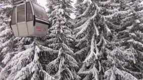 与多雪的树的滑雪电缆车 股票视频