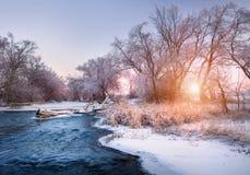 与多雪的森林冬天风景的圣诞节背景 图库摄影