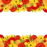 与大丁草的明亮的颜色的花横幅 皇族释放例证