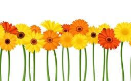 与大丁草花的水平的无缝的背景 也corel凹道例证向量 免版税库存照片