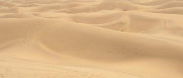 与大加那利岛, Canarian海岛沙丘的美好的风景  免版税图库摄影