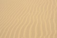 与大加那利岛, Canarian海岛沙丘的美好的风景  库存照片