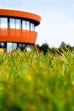 与大厦的绿草在背景 图库摄影