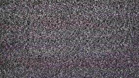 与大噪声的电视雪 影视素材