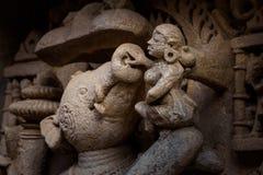 与大地的公猪化身在很好步在勒利德布尔,印度 免版税库存图片