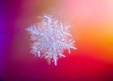 与大增量的真正的雪花图片在冬天雪 冻结水 库存照片