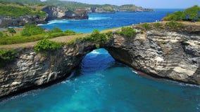 与大孔的巨大的珊瑚和在大海围拢的上面的绿色灌木 免版税库存图片
