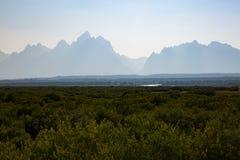 与大提顿峰山的绿草领域在背景中 免版税图库摄影
