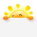 与大标志的夏天太阳 皇族释放例证