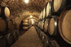 与大桶的葡萄酒库内部 免版税图库摄影