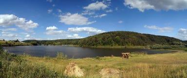 与大池塘的夏天风景 库存图片