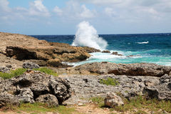 与大波浪的海滩 免版税库存图片